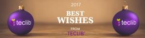 The Teclib' team wishes you a Happy Holiday Season