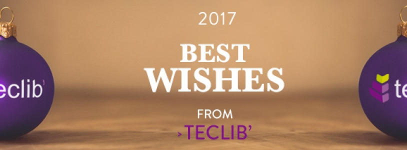 The Teclib' team wishes you a Happy Holiday Season